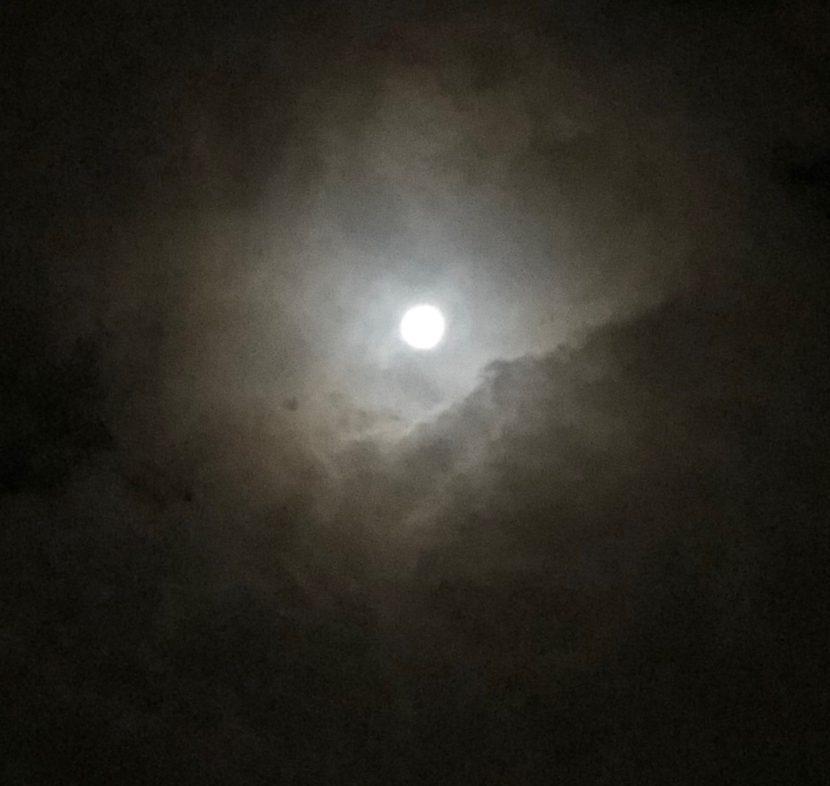 雲間からひょっこりと見えた月