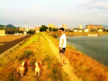 お犬様兄妹と散歩